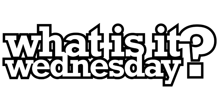 Introducing bisco's New Blog Series – What is itWednesday?